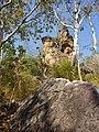 Rocks and trees at Bardedjilidji Walk, Kakadu National Park.jpg