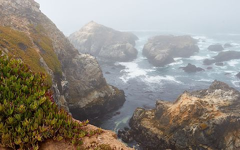View of the California coast at Bodega Head, Sonoma County, on a foggy morning