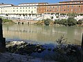 Roma - Complesso di San Michele dalla riva del Tevere.jpg