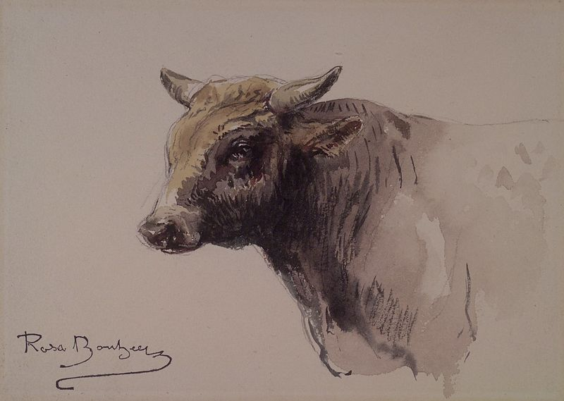 ملف:Rosa Boheur Head of a Bull.jpg