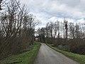 Route à Sergenon (Jura).JPG
