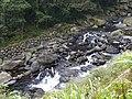 Ruizi Creek 蚋仔溪 - panoramio (3).jpg