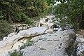Séran près Cascade Cerveyrieu Artemare 4.jpg