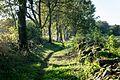 Söderåsen - panoramio (32).jpg