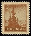 SBZ Thüringen 1945 92 Tannen.jpg