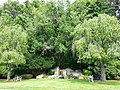 Saint Josephs Cemetery, Chelmsford, MA - panoramio.jpg