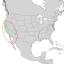 Salix laevigata range map 1.png