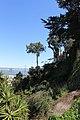 San Francisco - panoramio (180).jpg