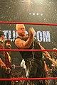 Sandman TNA July 2010.jpg