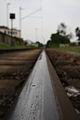 Schiene im Reinhafen.JPG