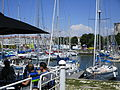 Se détendre au port de plaisance de La Rochelle, au coeur de la ville.JPG