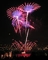 Seattle fireworks 2005.jpg