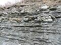 Seismite Ordovician Kentucky.jpg