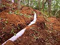 Septic Systems and Steep Slopes (10) (5097144797).jpg