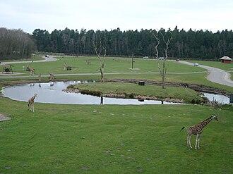 Serengeti Park - The Afrika section of Animal World