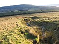 Shantron Hillside towards Ben Bowie - geograph.org.uk - 291864.jpg