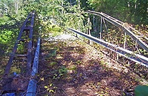 A bridge with wooden deck and iron supports covered with downed branches