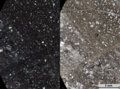 Sheared Cataclasite in Thin Section.png