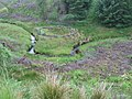 Sheepfold by the burn below Meikle Hill - geograph.org.uk - 873822.jpg