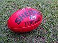 Sherrin Lyrebird Full Size ball, taken 2014.jpg