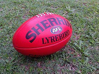 Sherrin - A full-size Sherrin Lyrebird ball