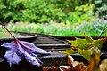 Shibden Park - panoramio (4).jpg