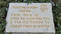 Shimon Alfasi 154428.jpg