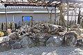 Shoinji suribachimatsu 1.jpg