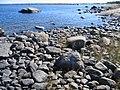Shoreline at Ängesön, Holmöarna nature reserve.jpg