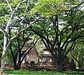 Si Satchanalai historical park 1.jpg