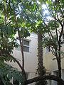 Sieff Institute IMG 2316.JPG