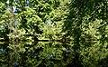 Siemensstadt - -i---i- (14103906082).jpg