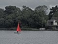 Small yacht with red sail.jpg