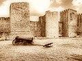 Smederevska tvrđava danas; Smederevo fortress today 01.jpg