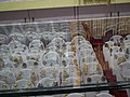 Snap from total Mall in old airport road - Bangalore 8316.JPG
