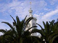 Train station of Sochi hidden behind palm trees