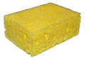 Sponge on white background.jpg