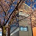 Spring Inria.jpg