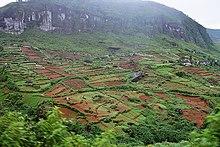 Deforestation national environmental policy