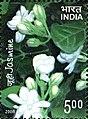 Stamp of India - 2008 - Colnect 157962 - Jasmine Scented.jpeg