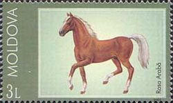 Stamp of Moldova md445.jpg