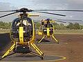 Starr-091120-9770-Casuarina equisetifolia-habit with Cliff preflight helicopter checks-Kahului Heliport-Maui (24964333706).jpg