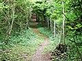 Steep woodland footpath near Blue Bell Hill - geograph.org.uk - 1355734.jpg