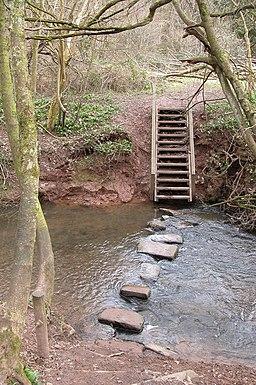 Stepping stones, Shrawley Wood - geograph.org.uk - 139039