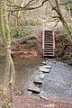 Stepping stones, Shrawley Wood - geograph.org.uk - 139039.jpg