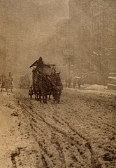 Stieglitz-Winter.jpg