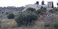 Strongholds in Jerusalem (2554756961).jpg
