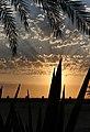 Sunset Cape Verde (4334720425).jpg