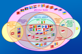 Supranational European Bodies-ta.png