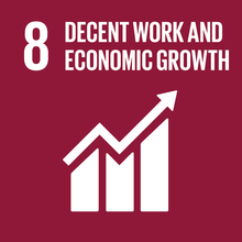 Sustainable Development Goal 8.png